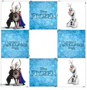 frozen memory cards (1)