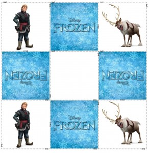 frozen memory cards (2)