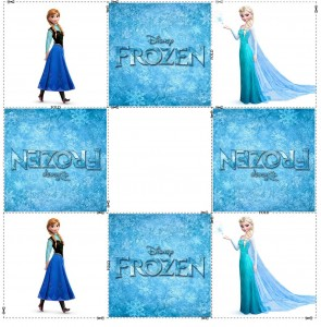 frozen memory cards (3)