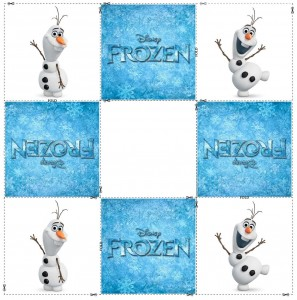 frozen memory cards (6)