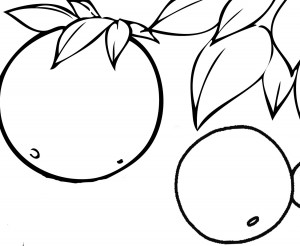 fruit coloring pages for kıds (11)