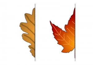 leaf symmetry activities (2)