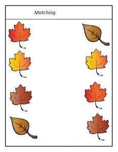 leaf themed matching activity