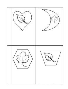 leaf themed shapes for kıds