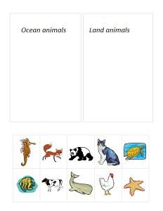 ocean animals group