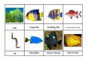 ocean animals matching for preschool