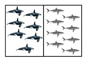 ocean animals number pictures