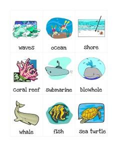 ocean animals words