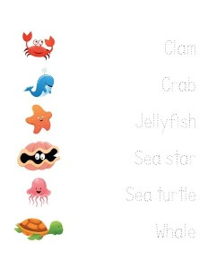 ocean animals worksheets word matching