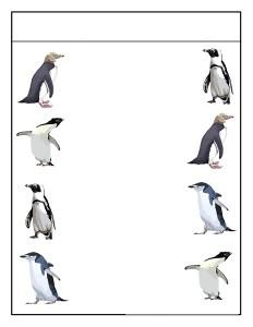 penguin matching  (1)
