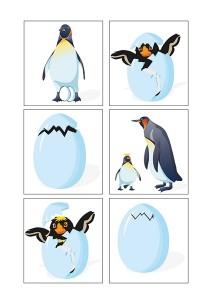 penguin printables (3)
