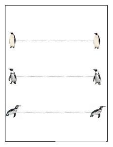 penguin tracing line acivity (1)