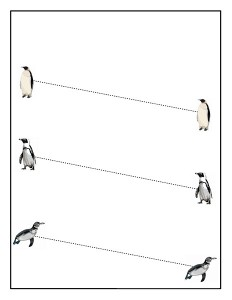 penguin tracing line acivity (2)