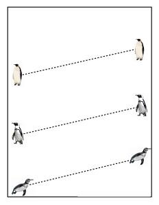penguin tracing line acivity (3)