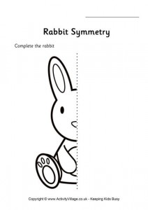 rabbit_symmetry