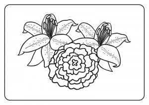 summer coloring pages  (19)
