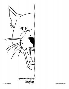 symmetry cougar