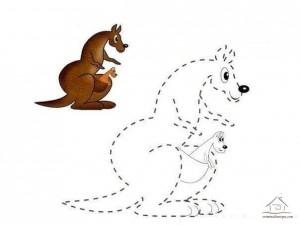 tracing line and coloring kangaroo
