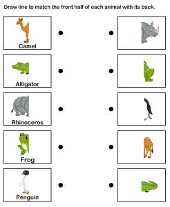 animals body parts printables (1)