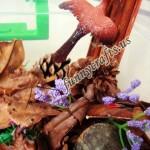 Our bird themed sensory bin