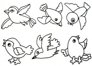 bird themed coloring pages (12)