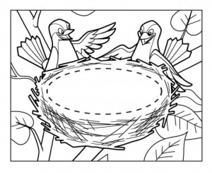 bird themed coloring pages (21)
