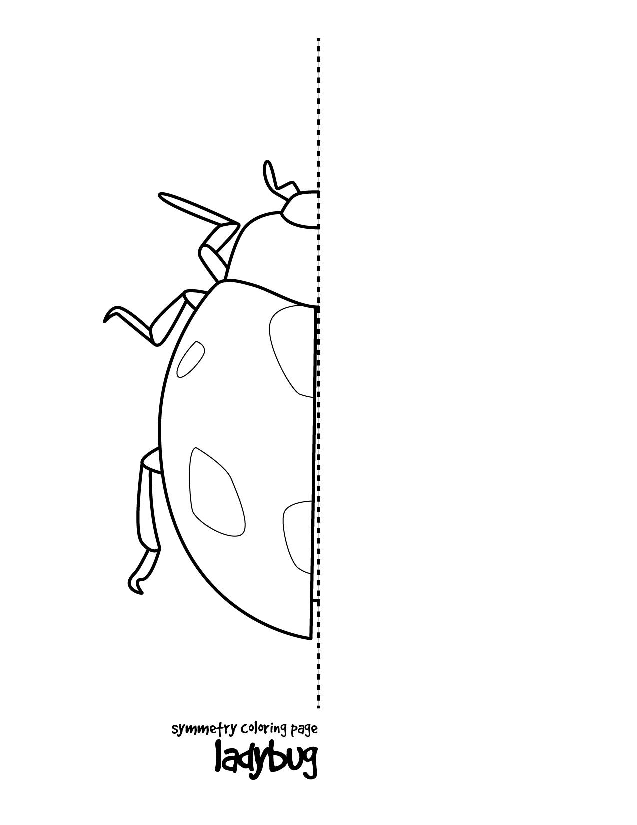 math worksheet : ladybug math free worksheets for kıds 14 « funnycrafts : Free Worksheets For Math