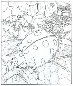 ladybug spring mandala coloring pages (8)