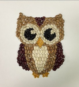 owl seed craft
