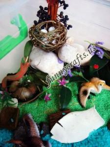 preschool bird theme activities