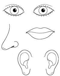 preschool five sense worksheets (12)