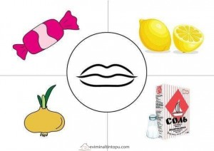 preschool five sense worksheets (7)