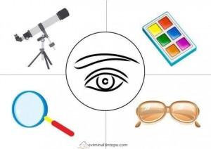 preschool five sense worksheets (8)