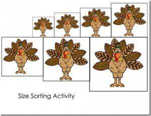 turkey size sorting