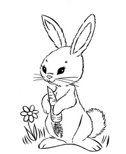 bunny coloring pages (4)