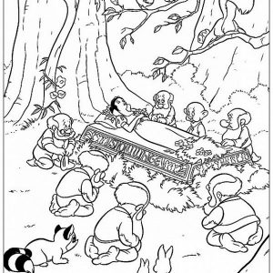 cotton princess coloring pages  (9)