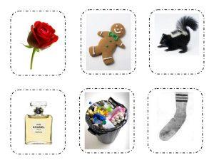 five senses sorting  printables (3)