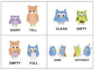 owl theme opposites cards (1)