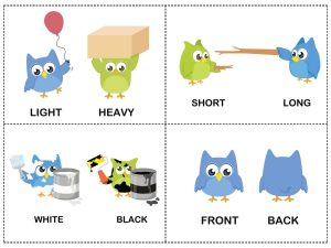 owl theme opposites cards (2)