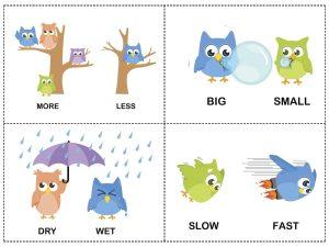 owl theme opposites cards (3)
