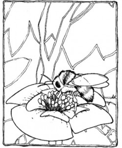 spring bee coloring pages (7)