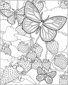spring coloring pages (5)