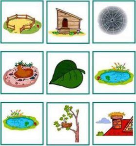 animals and their homes printables (6)