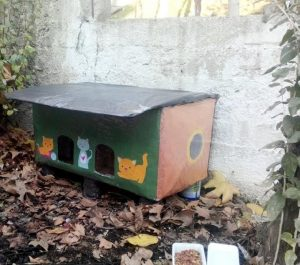 cat house from cardboard