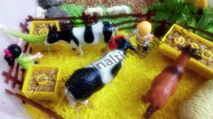 farm themed sensory bin activities for kids