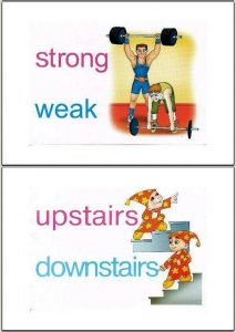 opposite words with pictures worksheets