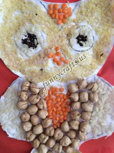 owl seed craft for children (1)
