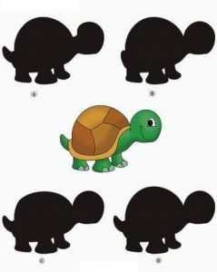 turtle shadow matching sheets