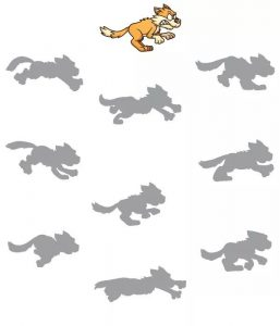 wolf shadow matching sheets