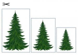 christmas size sequencing